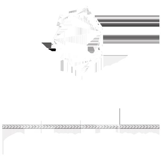 Logo bio Mechanical Festival